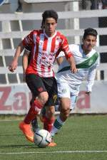 instituto-banfield-inferiores-2015